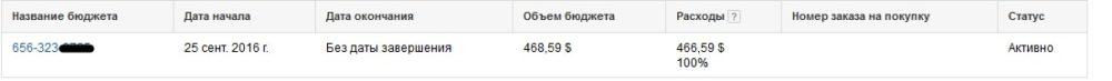 КЕЙС: льем с Google Adwords на Bactefort - капли против паразитов (46.966)