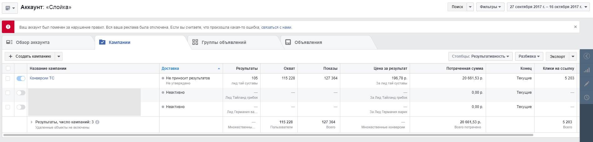 КЕЙС: льем с таргета Facebook на крем для суставов Пантогор (630.170)