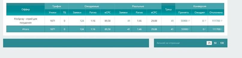 КЕЙС: льем с тизерки Oblivki на FitoSpray (36.719)