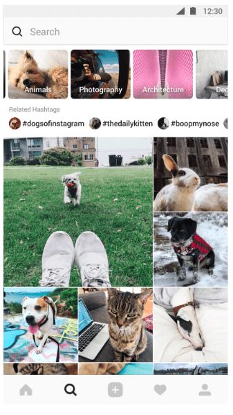 Прогнозы развития Instagram на 2018–2019 г.