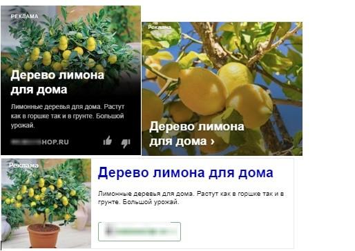 КЕЙС: льем с Яндекс.Директ на мини-деревья Экодар (627.833)